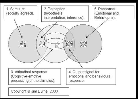 Complex interaction, thinking-feeling